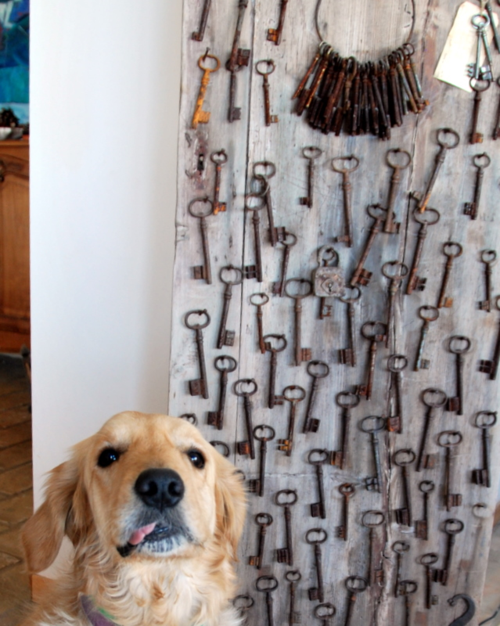 golden retriever and French antiques keys
