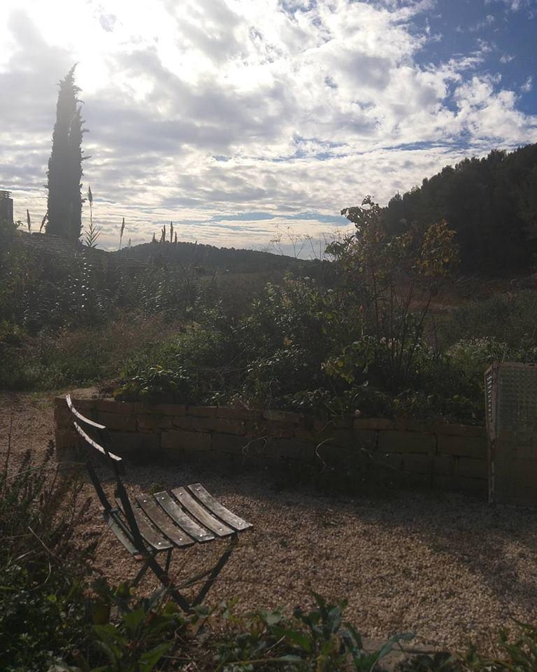 Garden-behind-farmhouse