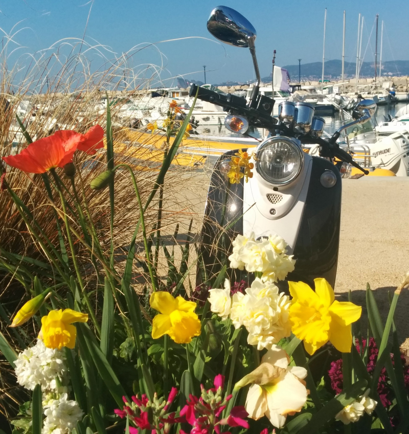 Motorcycle-at-port-de-la-madrague