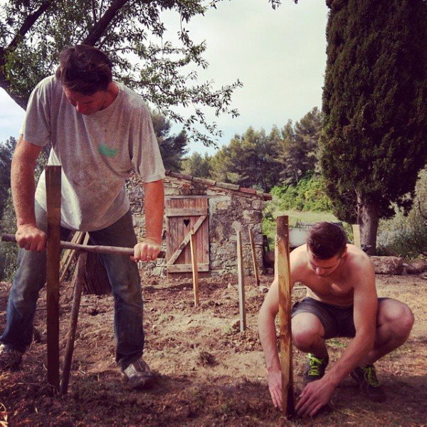 Jean-marc and son max planting cinsault at mas des brun vineyard