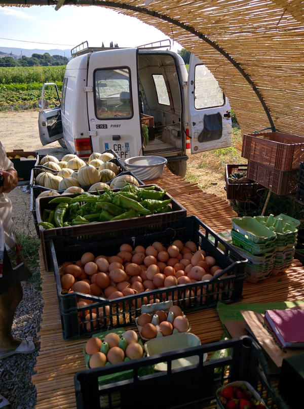 Farmers stand in st cyr-sur-mer produce france organic