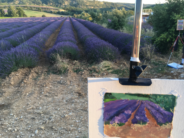 Lavender and Vine painting tour provence