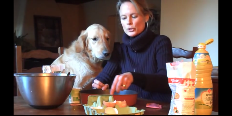 Golden retriever make yogurt cake