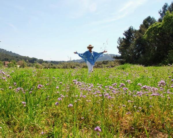My mom Jules in a field of phacelia flowers planted in our old vineyard