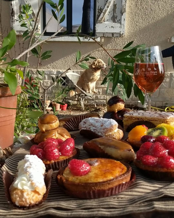 Our golden retriever Smokey beneath the old shutters and a selection of french pastries