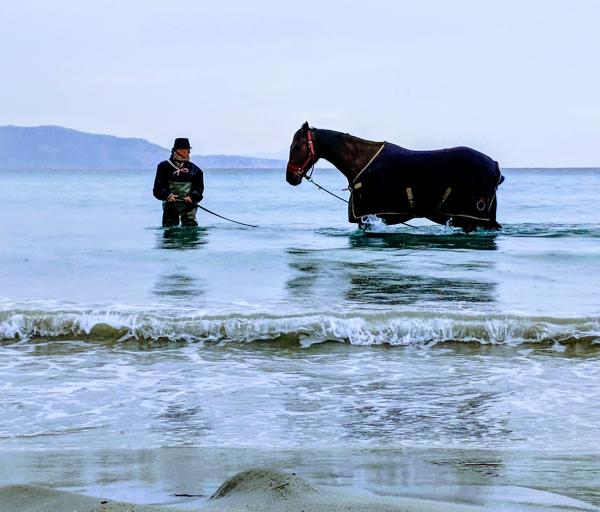 Horse rider mediterranean sea
