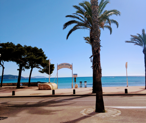 La Ciotat empty boardwalk plage lumiere beach palm trees