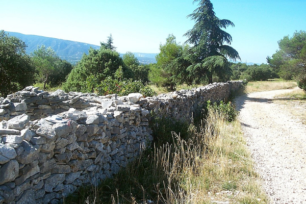 Wall built to keep out the plague-Mur_de_la_peste