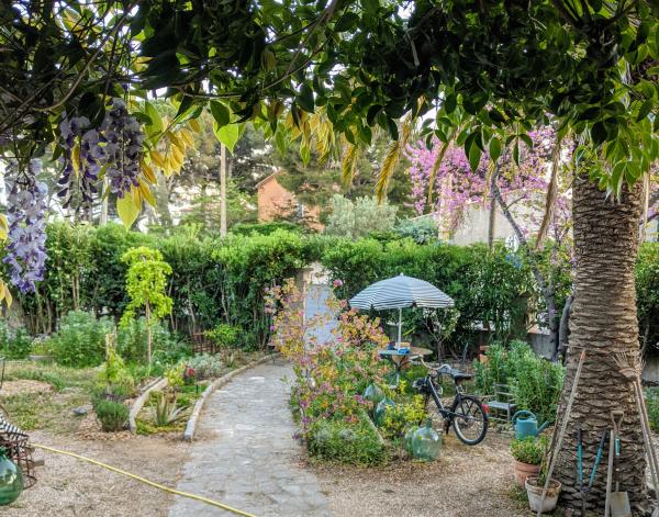Garden april 2020
