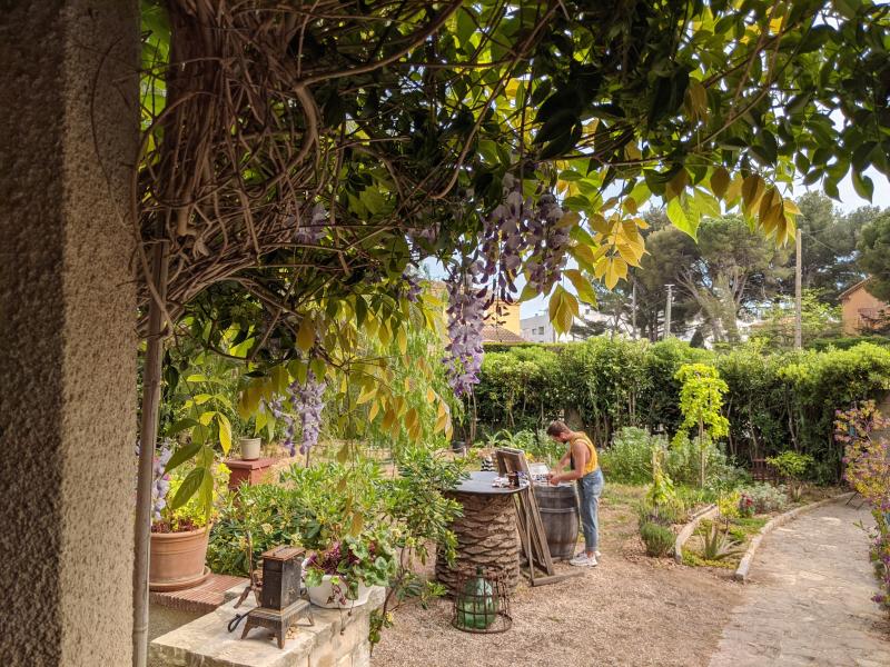 Max painting  in garden