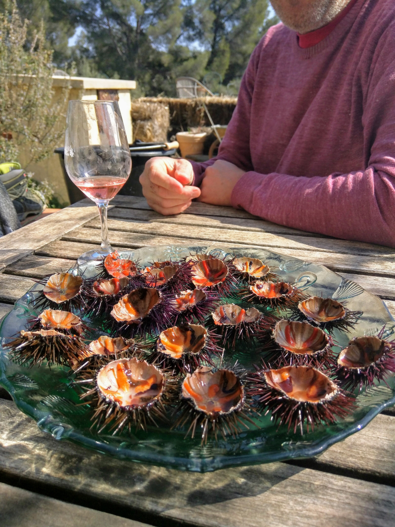 Sea urchins oursins prepared rose wine
