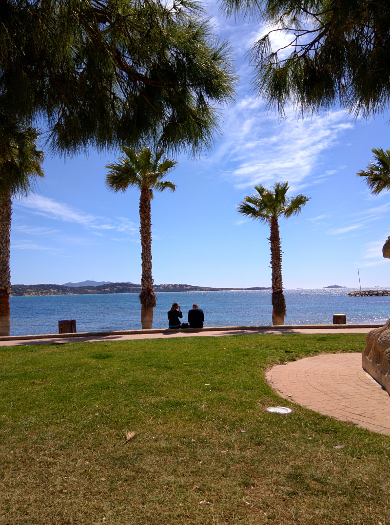 Strangers in bandol france palm trees beach sea mediterranean french