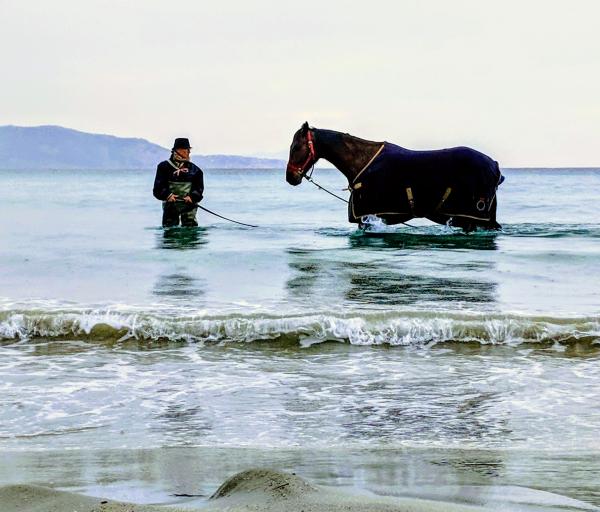 Horse and trainer in La Ciotat photo Kristi Espinasse