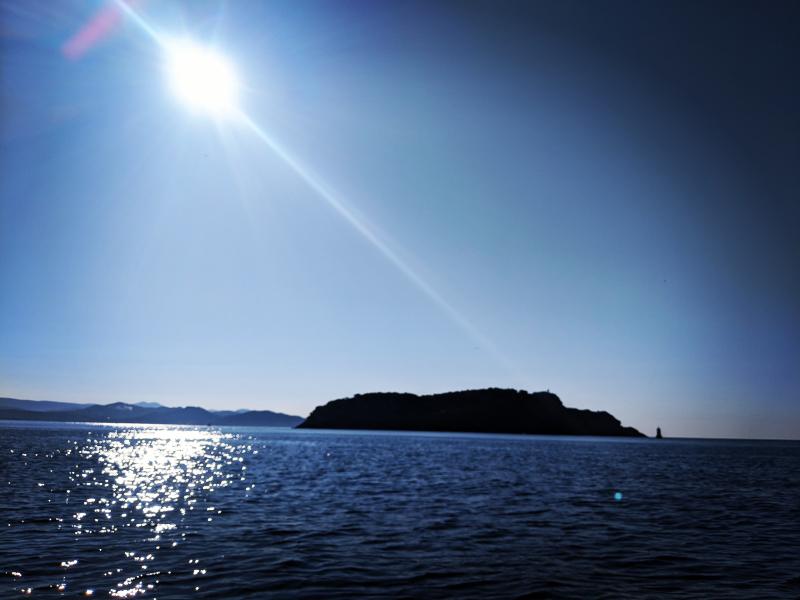 The Green Island