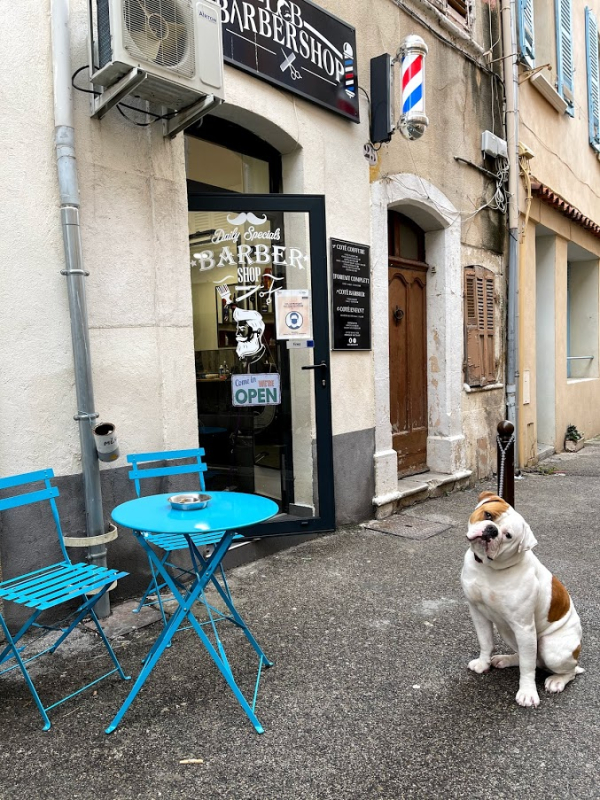 Dog in front of barber