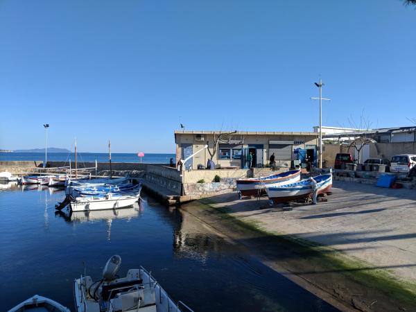 Port in la ciotat wooden boats or pointus