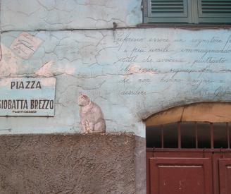 Piazzacat_4