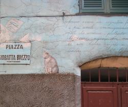 Piazzacat_5