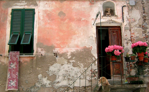 La Vie de Chien = A Dog's Life (c) Kristin Espinasse